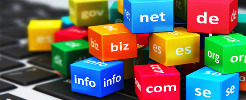 Domain Registration & Transfers